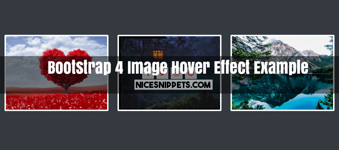 Bootstrap 4 Image Hover Effect With Social Icon