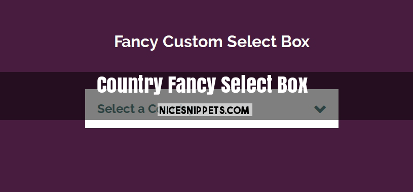 Fancy Country Select Box Design html,css and jquery