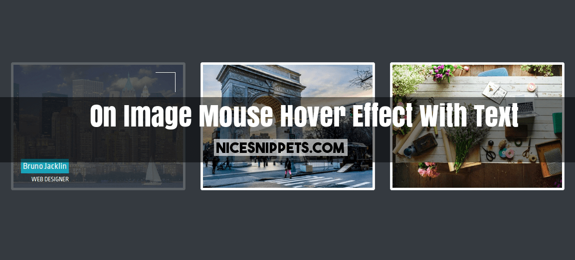 Bootstrap 4 Image Hover Effect Example and Demo