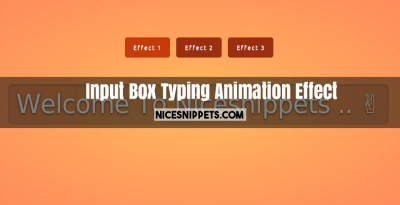 Fancy Input Box Typing Animation Effect