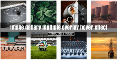 Image gallary with multiple overlay or hover effect
