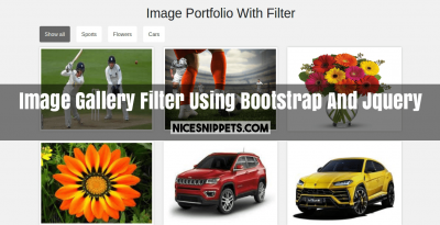 Image Gallery With Filter Using Bootstrap And Jquery