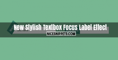 New Stylish Textbox on Focus Label Effect Usign css