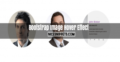 User image list with hover effect and display user info usign bootstrap
