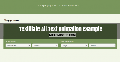 Textillate All Text Animation Example